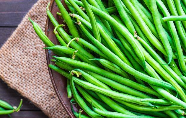 Giftiges Gemüse - Bohnen