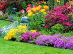 Blumenbeet anlegen Kriterien