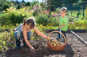 Gartengestaltung Zonen