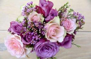 Rosen konservieren
