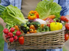Giftiges Gemüse
