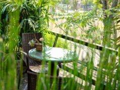 Dschungel-Feeling auf dem Balkon schaffen