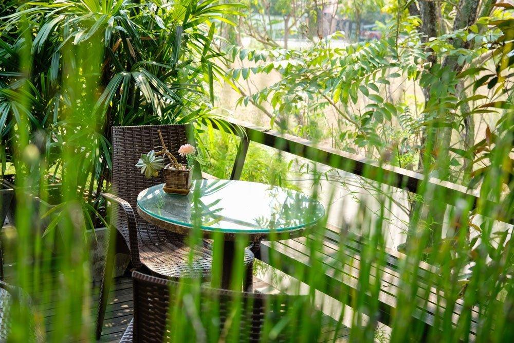 dschungel feeling auf dem balkon schaffen unsere tipps f r einen urwald balkon. Black Bedroom Furniture Sets. Home Design Ideas