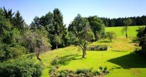 Rasen mähen am Hang - 5 Ideen wie es einfacher geht