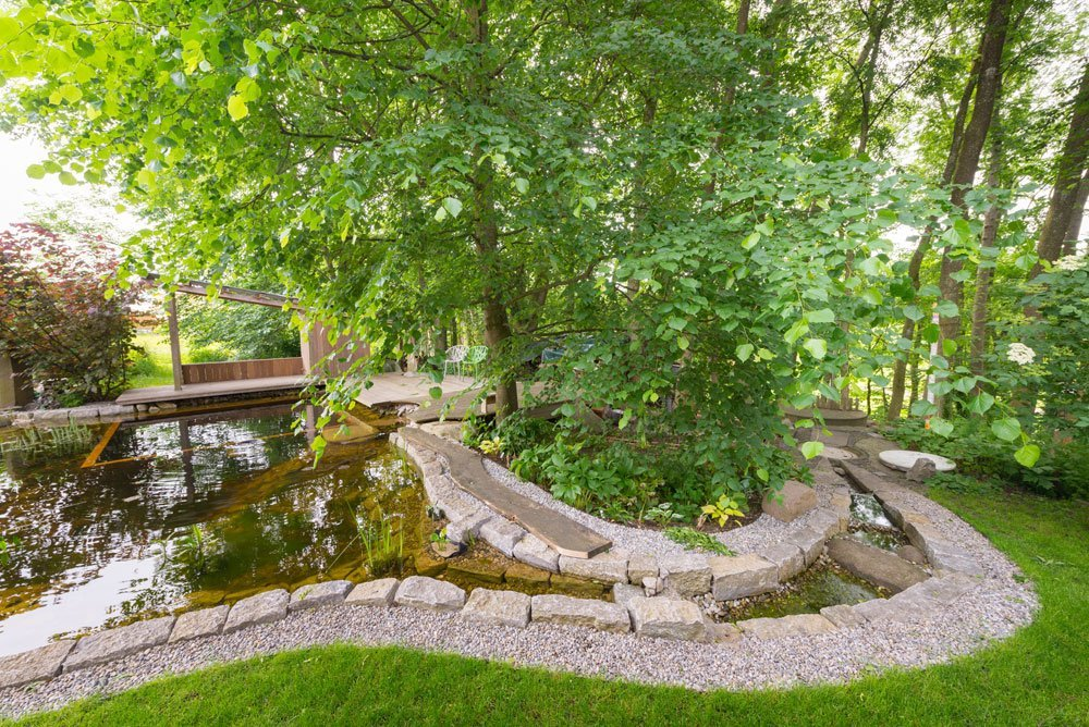 Bäume als Sonnenschutz am Gartenteich