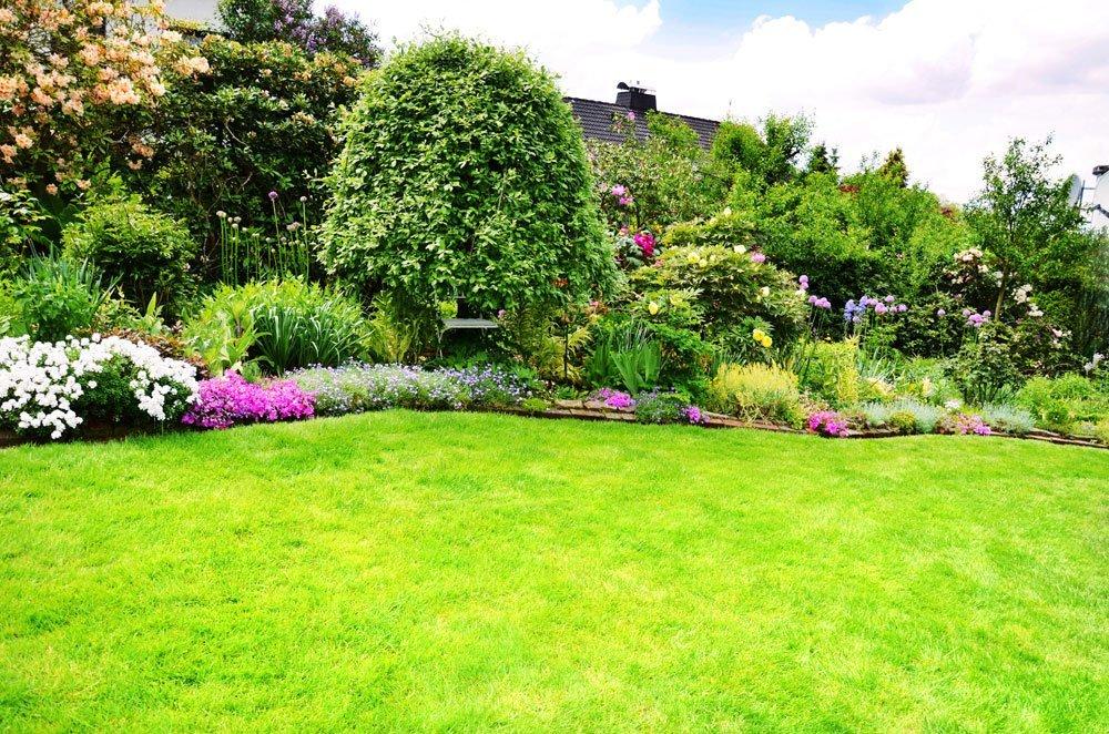 alte Rasenfläche erneuern