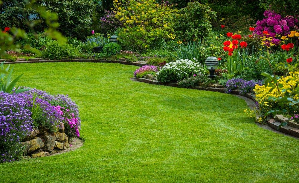 Rasen düngen organisch