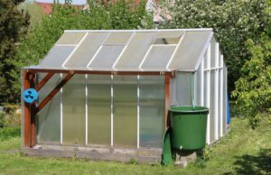 Kleingewächshaus: Funktionsweise, Standort, Arten und Lüftung