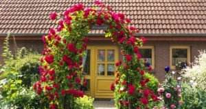 Rosenbogen bauen - Anleitung, Materialien und Bepflanzung