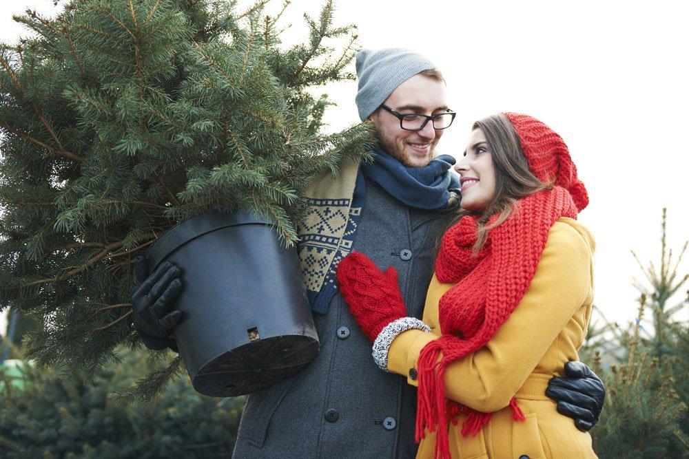 weihnachtsbaum im topf kaufkriterien und pflegetipps. Black Bedroom Furniture Sets. Home Design Ideas