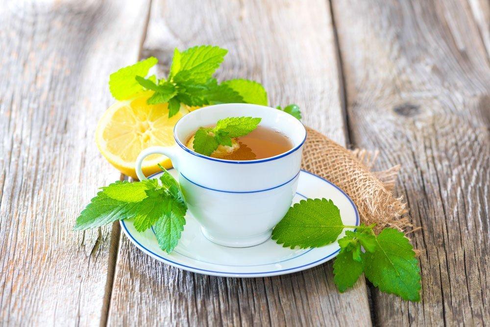 Zitronenmelisse Tee
