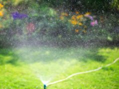 Garten Bewässerung Urlaub