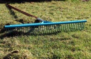 Rasen erneuern Sommer