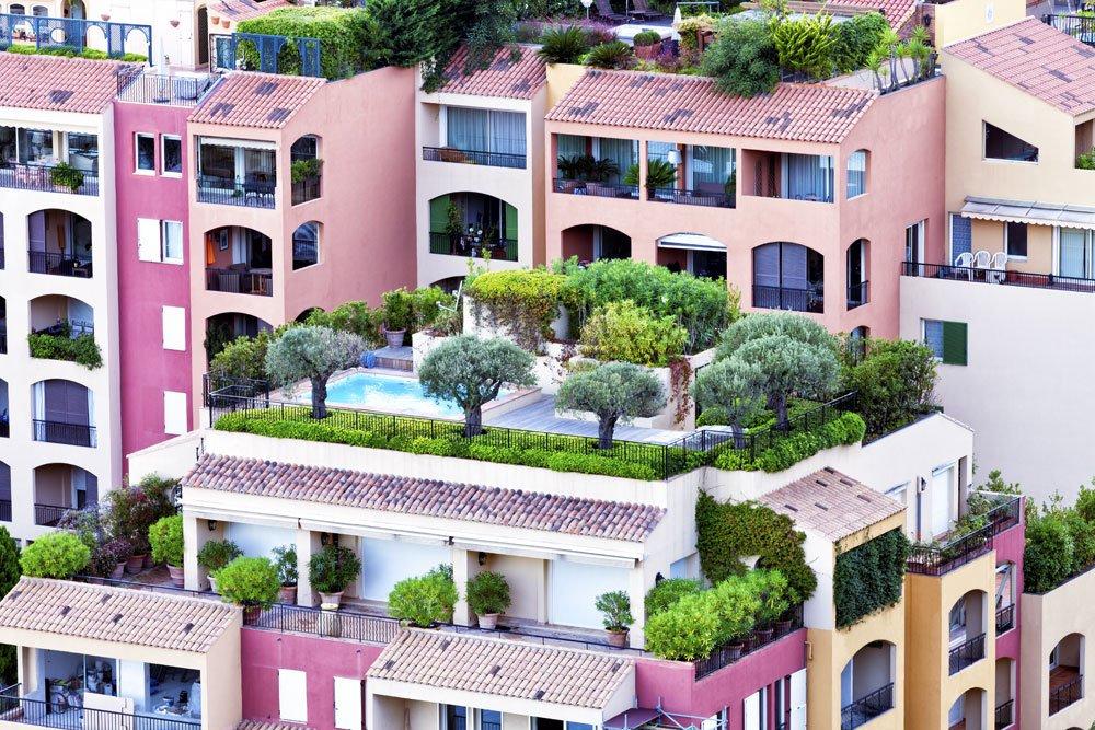 Dachterrasse - Bepflanzung