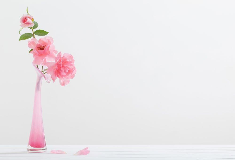 Rosenblüten färben