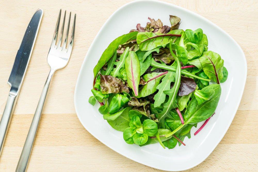 Blutampfer Salat