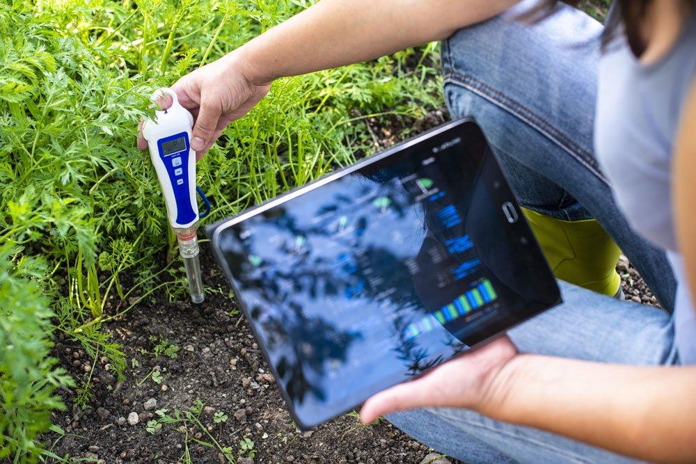 pH-Wert Boden bestimmen