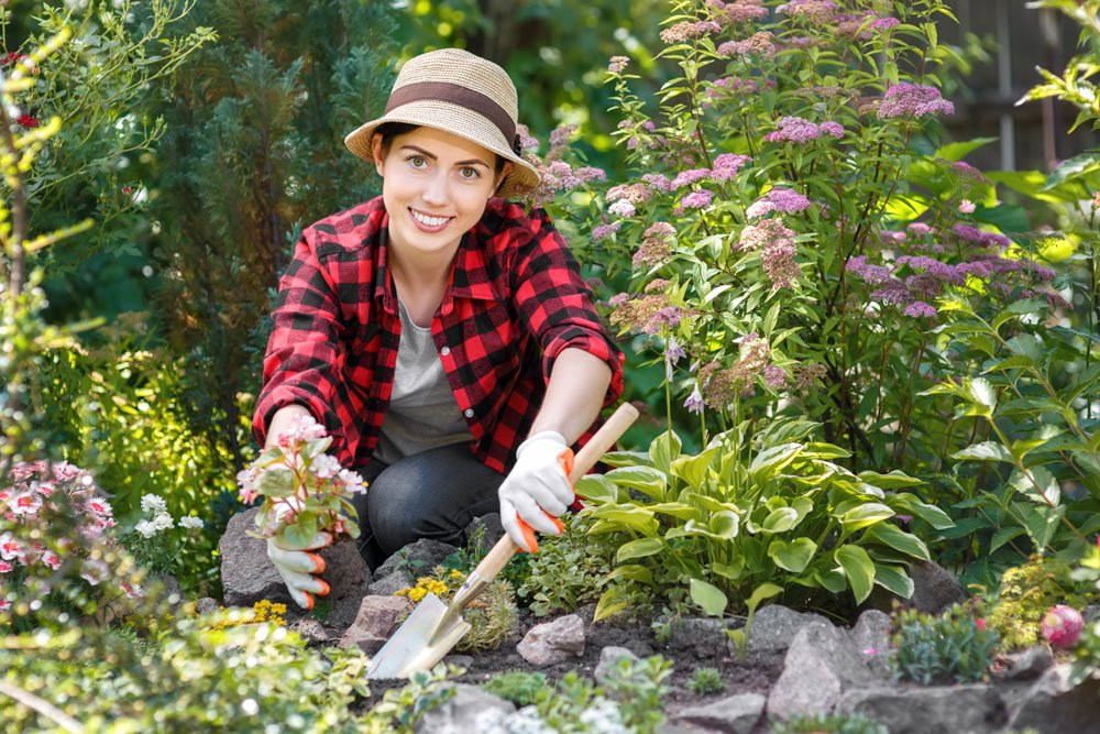 Gartenarbeiten nach dem Phänologischen Kalender