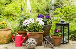 Pflanzkübel bepflanzen