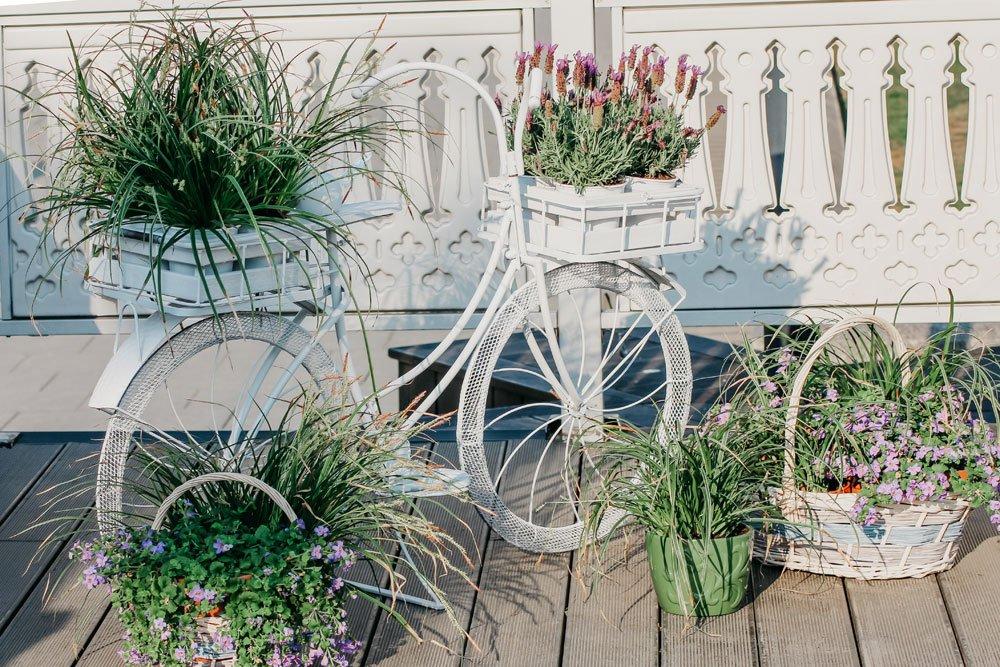 Terrasse im Landhausstil Bepflanzung