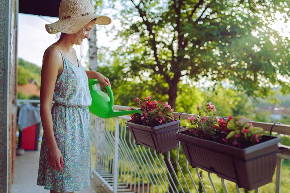 Kübelpflanzen für den Schatten