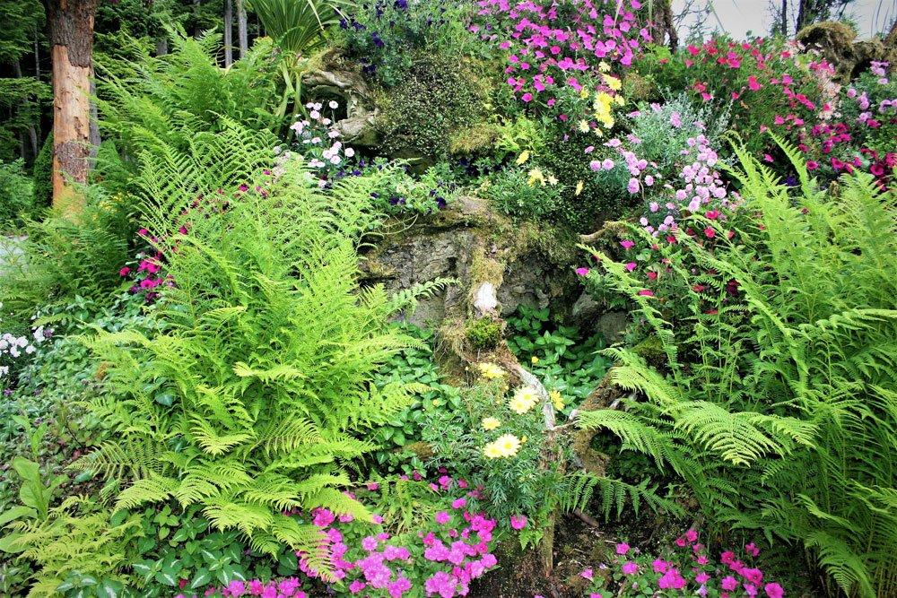 Garten gestalten Pflanzen