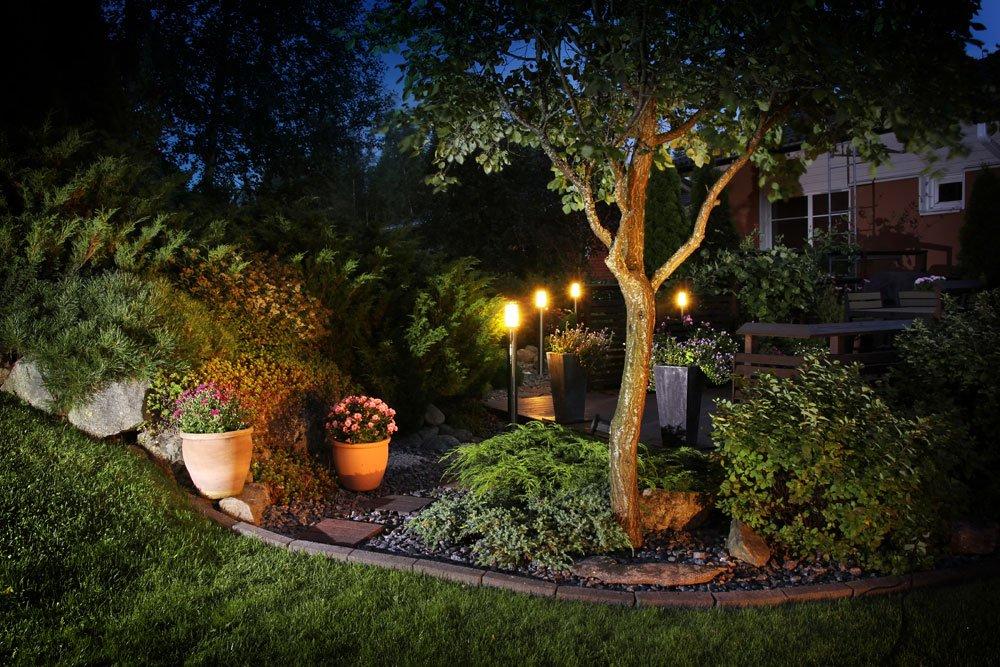 Beleuchteter Garten mit Baum