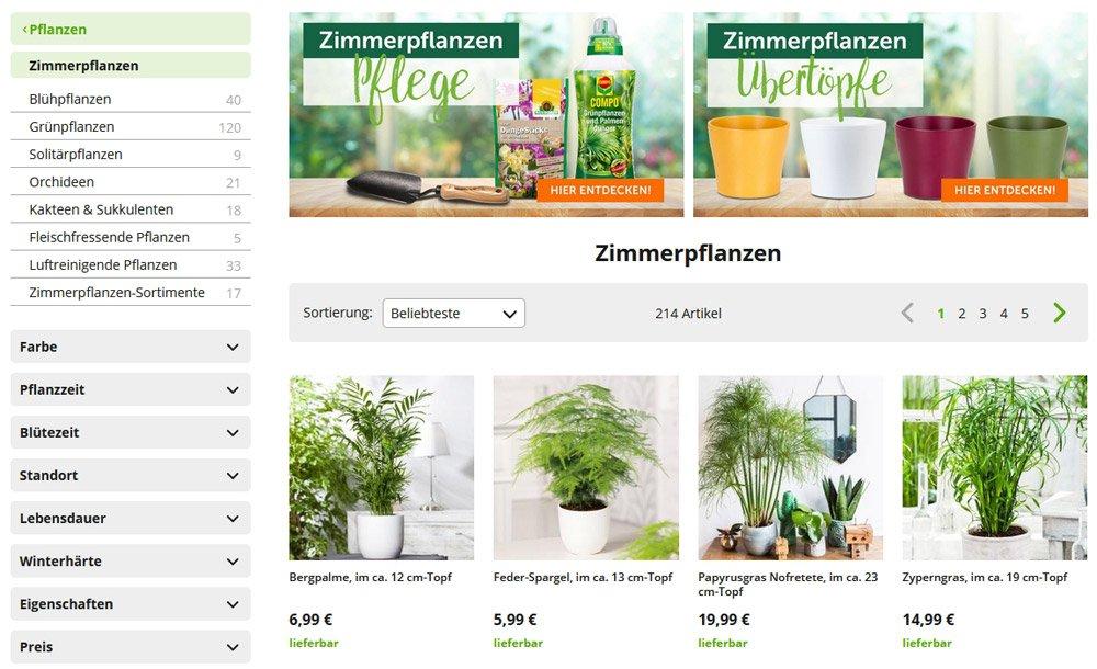 Zimmerpflanzen bei Gärtner Poetschke