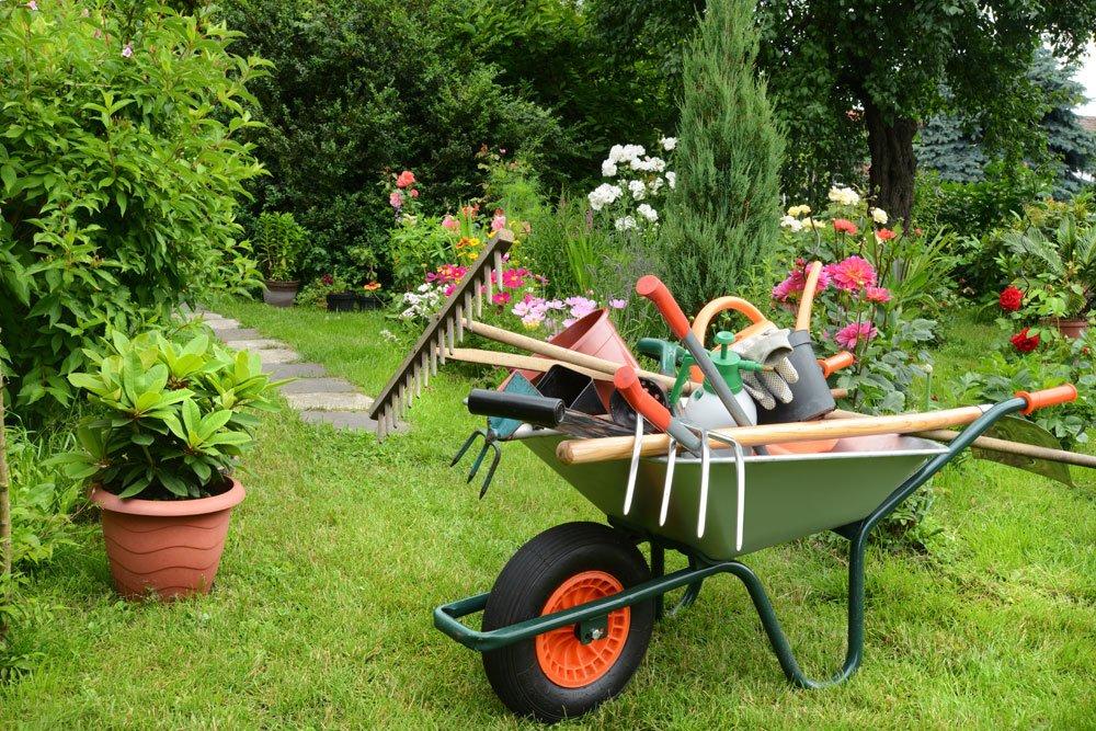 Prachtvoller Garten zu jeder Jahreszeit: 5 Tipps