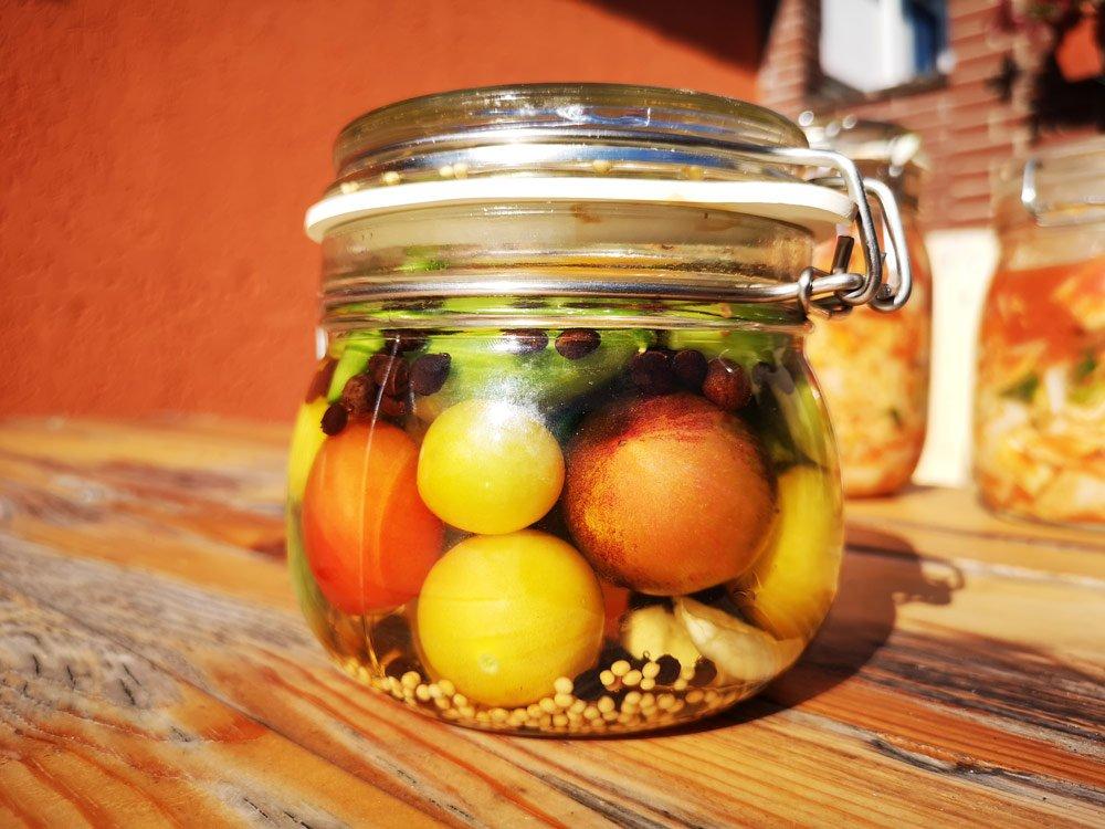 Tomaten fermetieren