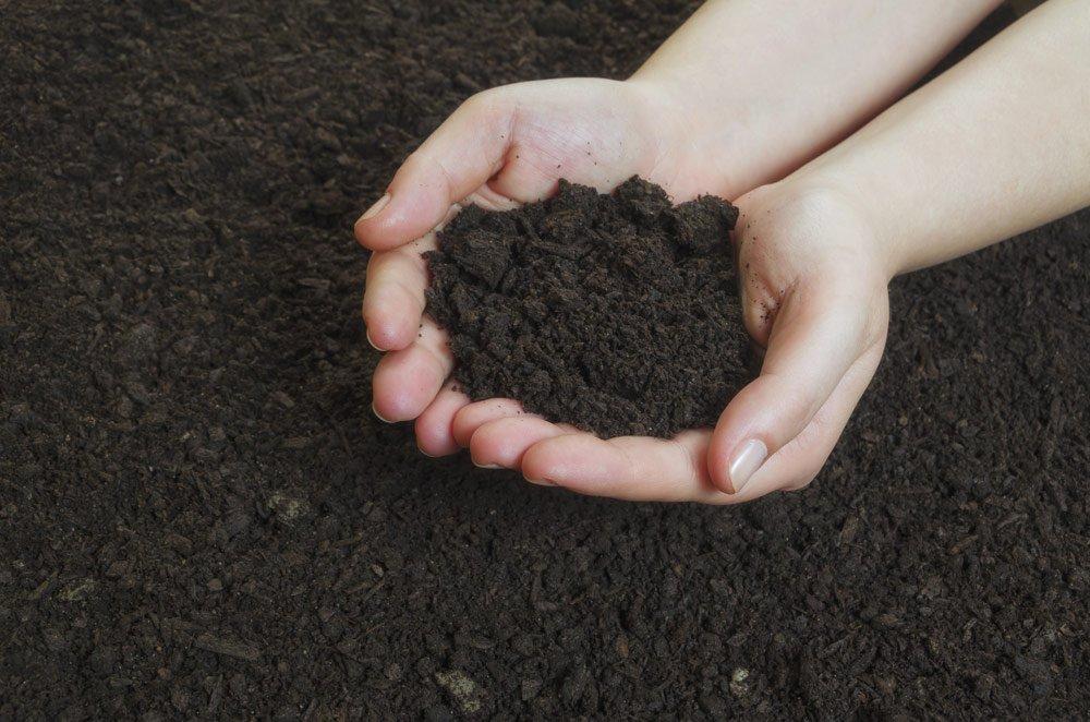 Square Foot Gardening Substrat