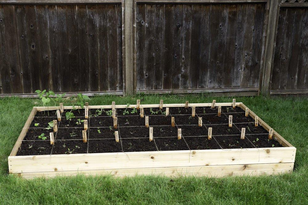 Square Foot Gardening: Gärtnern im Quadrat