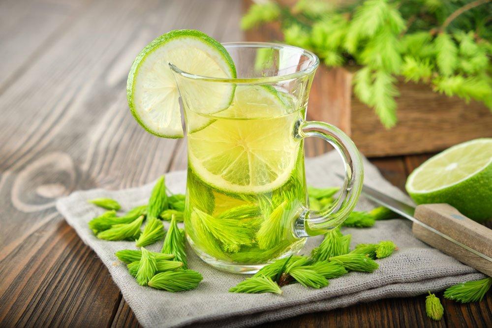 Tannenspitzen-Tee