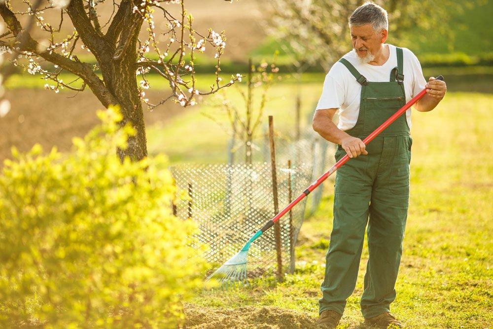 Gärtner mit Rechen