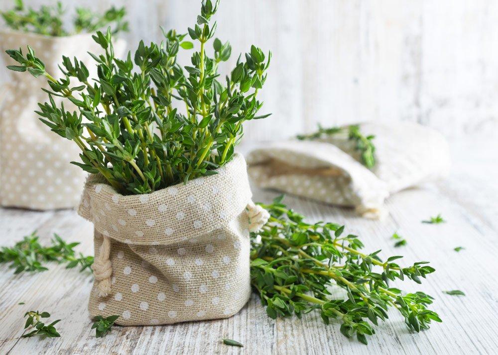 Pflanztaschen selber machen: Anleitung und Tipps